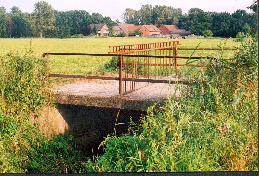 Lutter mit Weidebrücke
