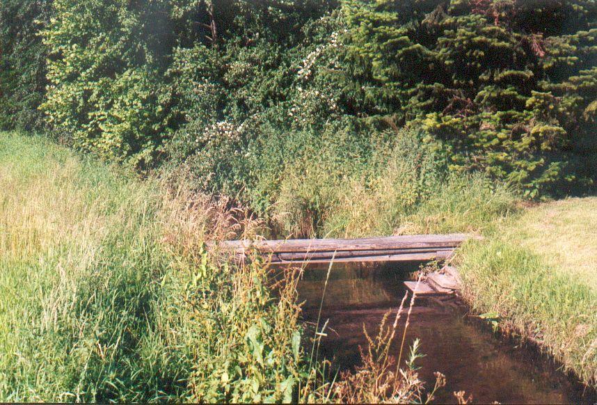 Lutter mit Wiesenbrücke